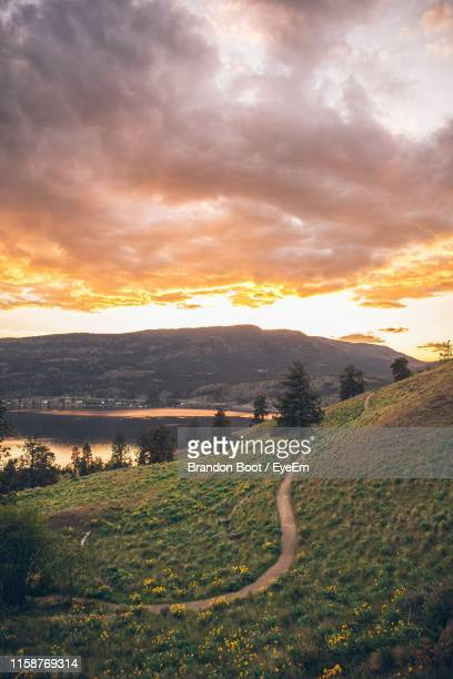 scenic view of field against sky during sunset - kelowna stock pictures, royalty-free photos & images