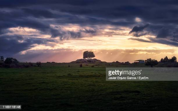 scenic view of field against sky during sunset - segovia stock pictures, royalty-free photos & images