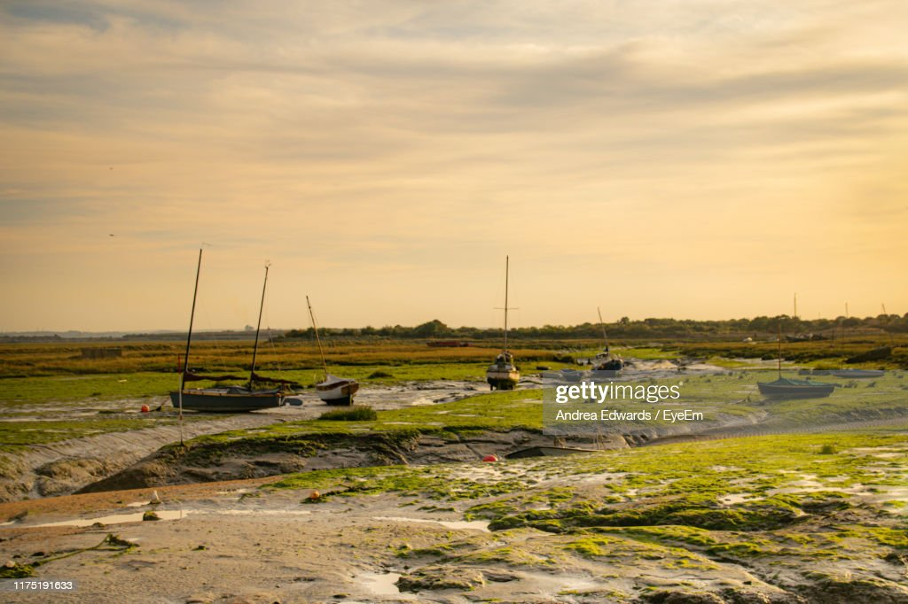 Scenic View Of Field Against Sky During Sunset : ストックフォト