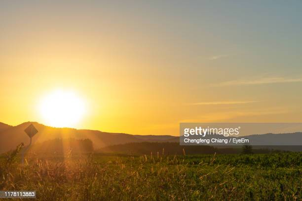 scenic view of field against sky during sunset - 平地 ストックフォトと画像