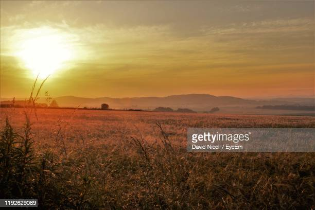 scenic view of field against sky during sunset - golden hour stock pictures, royalty-free photos & images