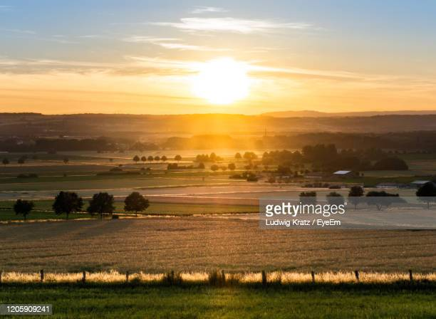 scenic view of field against sky during sunset - ニーダーザクセン州 ストックフォトと画像