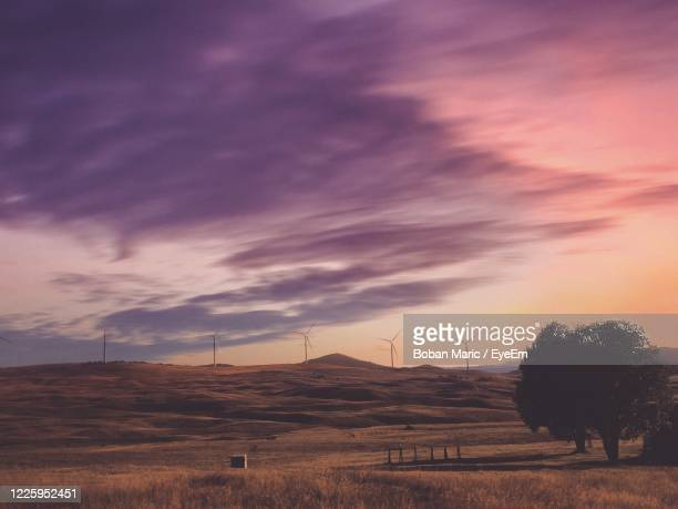 scenic view of field against sky during sunset - boban stock pictures, royalty-free photos & images