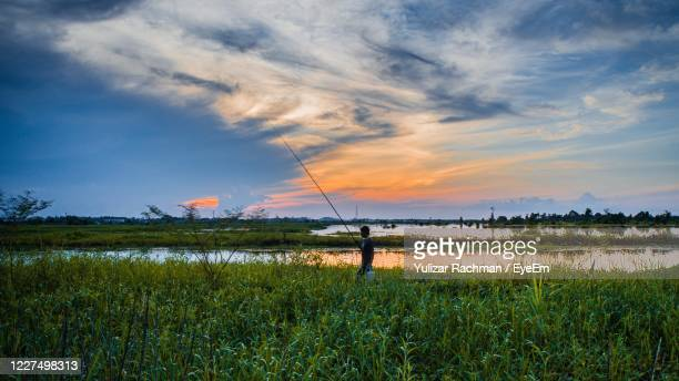 scenic view of field against sky during sunset - kalimantan stock pictures, royalty-free photos & images