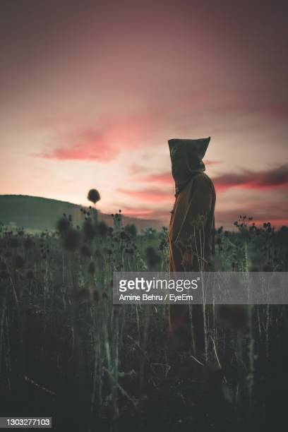 scenic view of field against sky during sunset - murderer stock pictures, royalty-free photos & images
