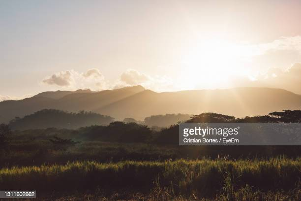 scenic view of field against sky during sunset - bortes stock pictures, royalty-free photos & images