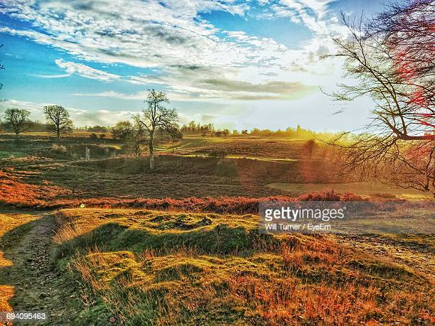 scenic view of field against sky during sunset - kent county stock pictures, royalty-free photos & images