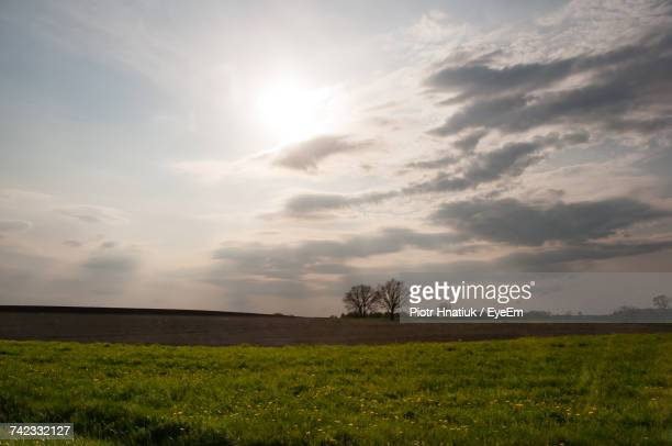 scenic view of field against sky during sunset - piotr hnatiuk ストックフォトと画像