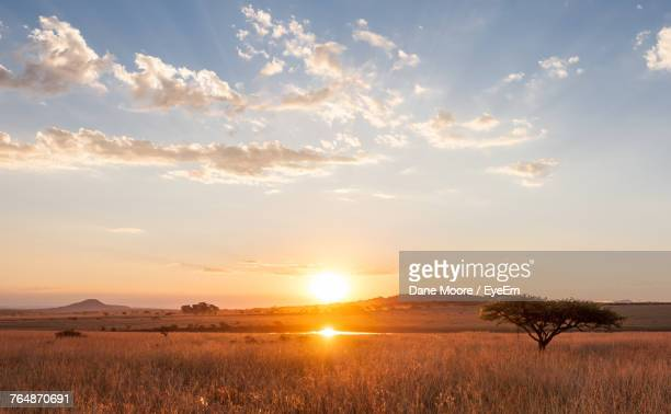 scenic view of field against sky during sunset - afrika stockfoto's en -beelden