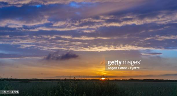 scenic view of field against sky during sunset - angela rohde stock-fotos und bilder