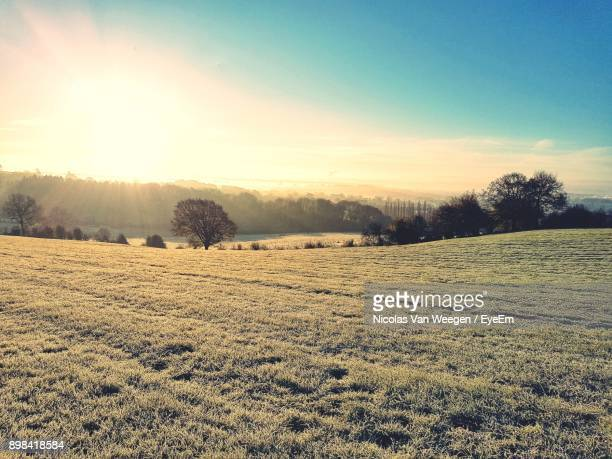 scenic view of field against sky during winter - moody sky stock pictures, royalty-free photos & images