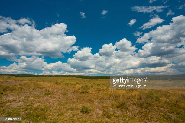 scenic view of field against sky - eyeem stock pictures, royalty-free photos & images