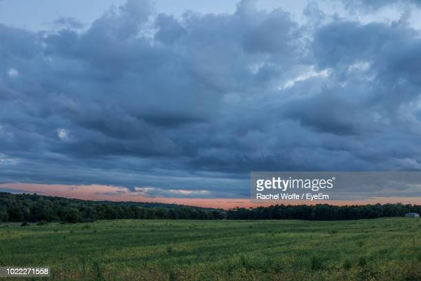 scenic view of field against sky - rachel wolfe stock pictures, royalty-free photos & images