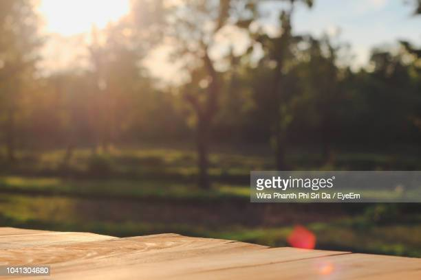scenic view of field against sky - focus on foreground stock pictures, royalty-free photos & images