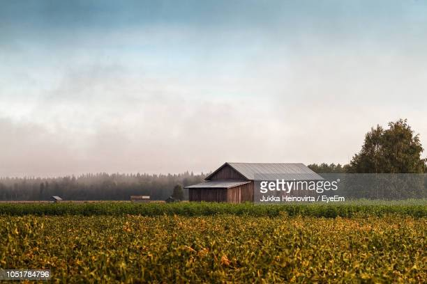 scenic view of field against sky - heinovirta stock photos and pictures