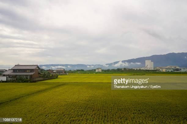 scenic view of field against sky - 岐阜県 ストックフォトと画像