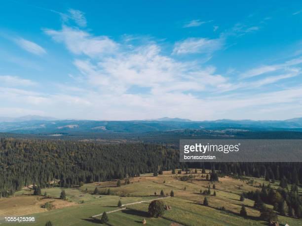 scenic view of field against sky - bortes ストックフォトと画像
