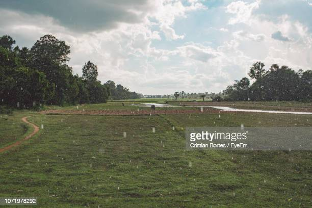 scenic view of field against sky - bortes stock pictures, royalty-free photos & images