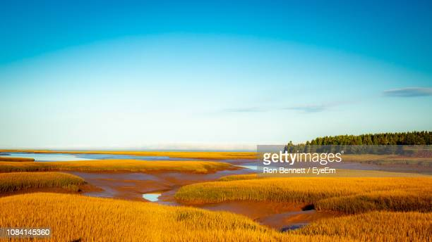 scenic view of field against sky - new brunswick canada stock pictures, royalty-free photos & images