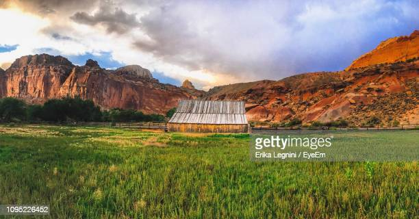 scenic view of field against sky - fruita colorado stock pictures, royalty-free photos & images