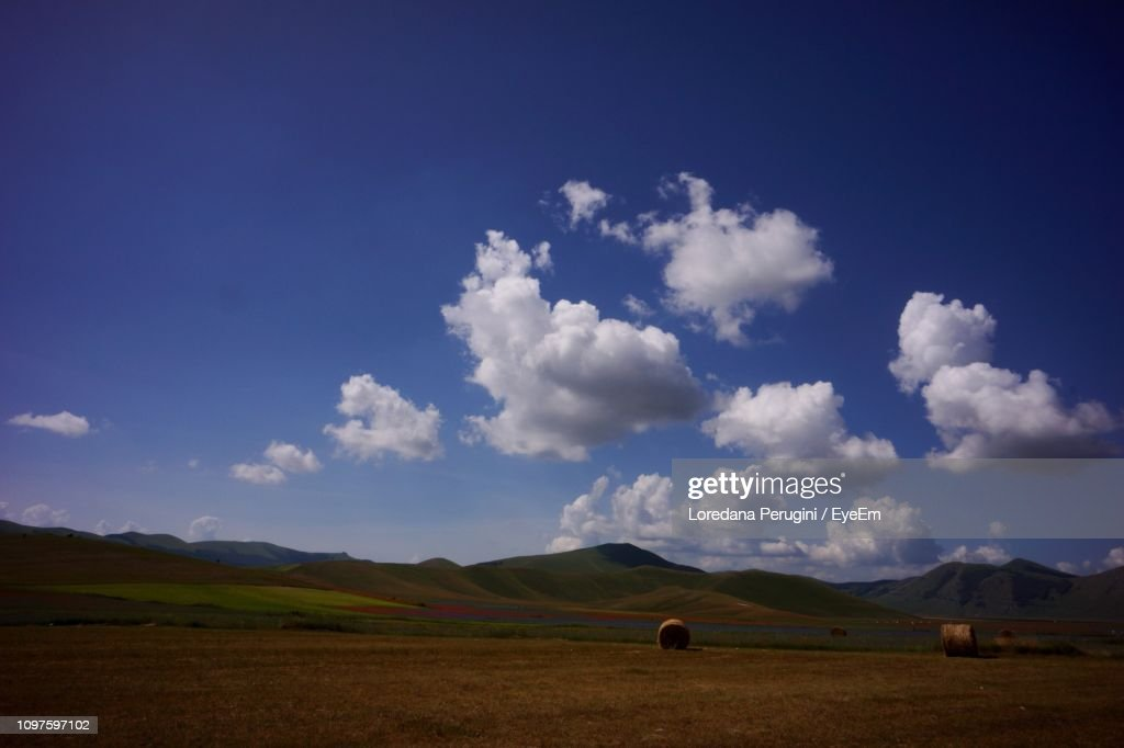 Scenic View Of Field Against Sky : Stock Photo