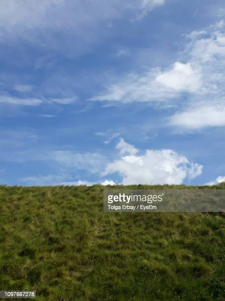 scenic view of field against sky - tolga erbay stock photos and pictures