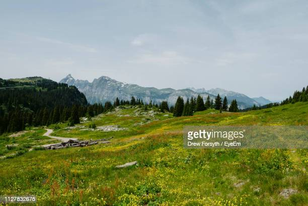 scenic view of field against sky - haute savoie stock photos and pictures