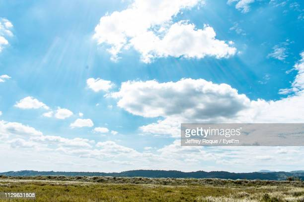 scenic view of field against sky - jeffrey roque stock photos and pictures