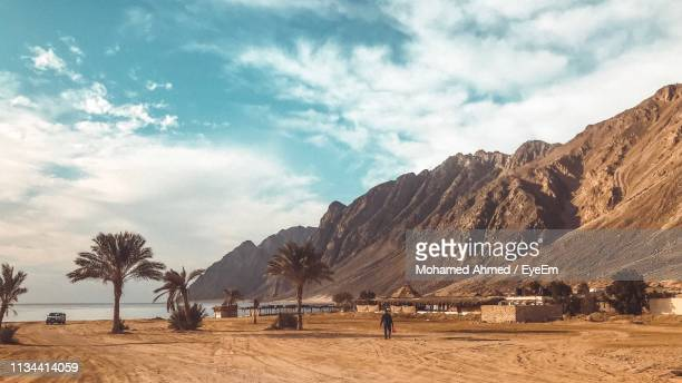 scenic view of field against sky - north africa stock pictures, royalty-free photos & images
