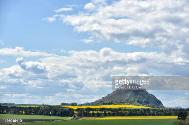 scenic view of field against sky - richard flint stock pictures, royalty-free photos & images