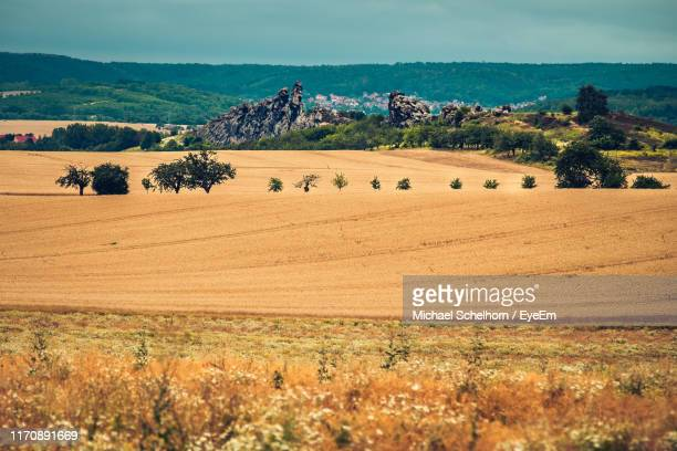scenic view of field against sky - saxony anhalt stock pictures, royalty-free photos & images