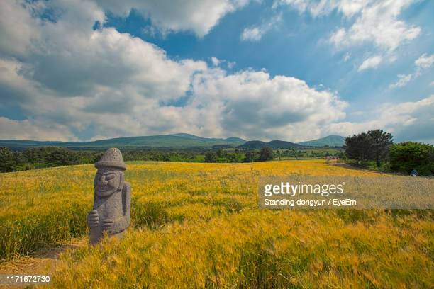 scenic view of field against sky - jeju island stock pictures, royalty-free photos & images