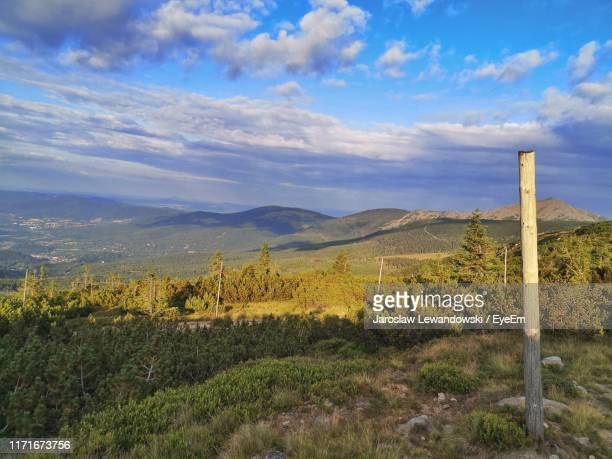 scenic view of field against sky - lewandowski stock photos and pictures
