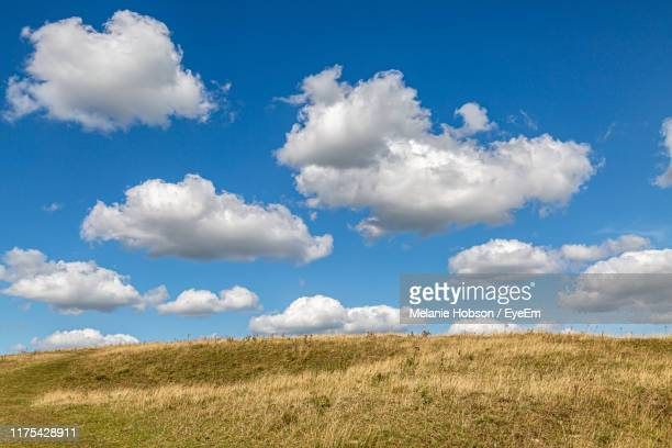 scenic view of field against sky - sky stock pictures, royalty-free photos & images
