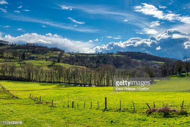 scenic view of field against sky - cantal stock pictures, royalty-free photos & images