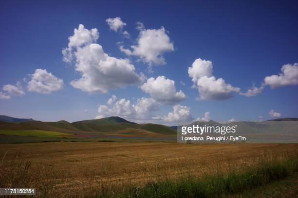 scenic view of field against sky - loredana perugini ストックフォトと画像