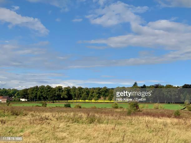 scenic view of field against sky - koper stock photos and pictures