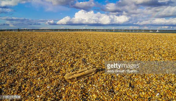 scenic view of field against sky - andy rinkoff stock photos and pictures