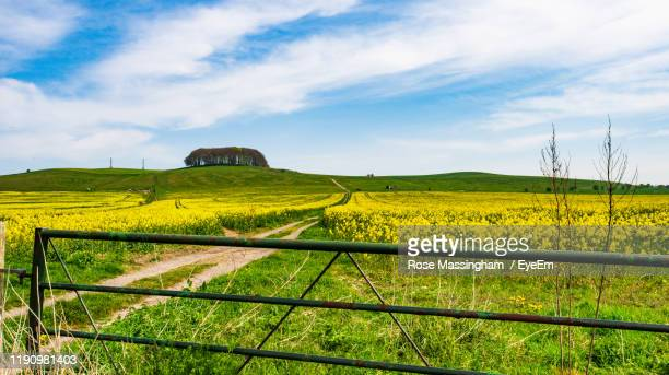 scenic view of field against sky - fence stock pictures, royalty-free photos & images