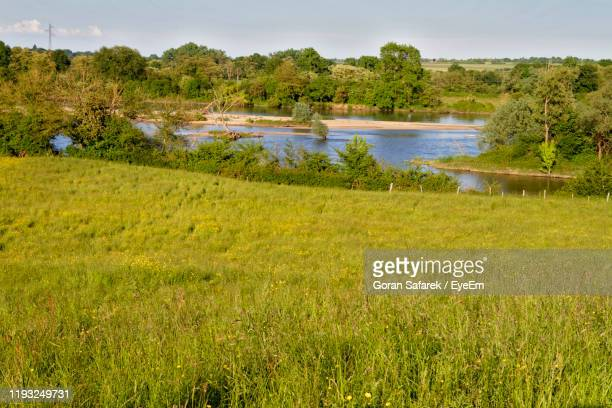 scenic view of field against sky - auvergne rhône alpes stock pictures, royalty-free photos & images