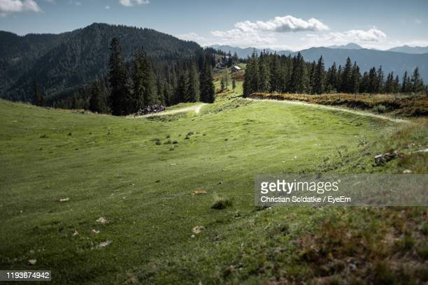 scenic view of field against sky - christian soldatke stock pictures, royalty-free photos & images