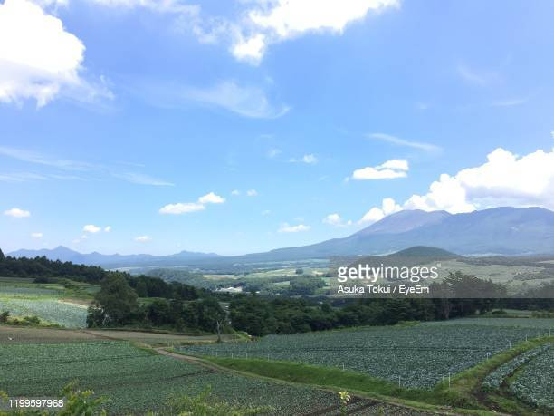 scenic view of field against sky - asuka stock pictures, royalty-free photos & images