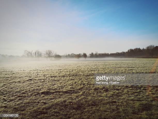 scenic view of field against sky - fog stock pictures, royalty-free photos & images