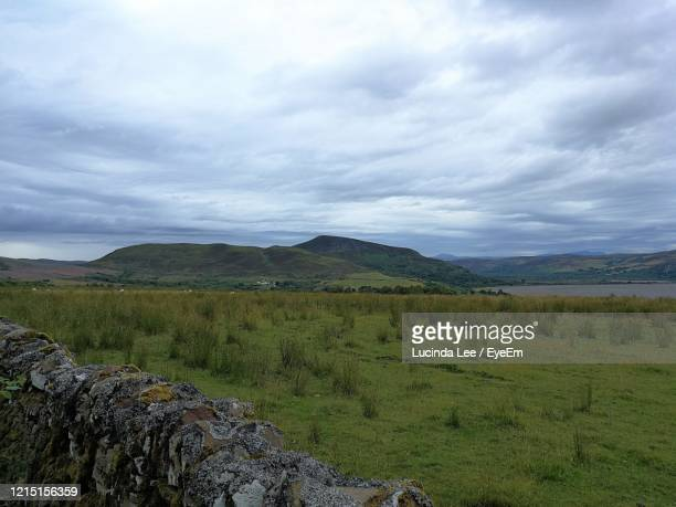 scenic view of field against sky - lucinda lee stock pictures, royalty-free photos & images
