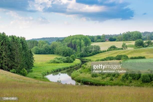 scenic view of field against sky - pasture stock pictures, royalty-free photos & images