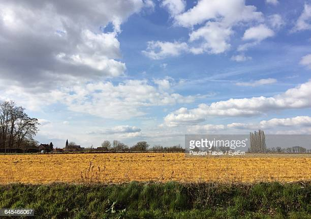scenic view of field against sky - paulien tabak stock pictures, royalty-free photos & images