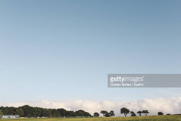 scenic view of field against sky - bortes foto e immagini stock