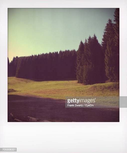 scenic view of field against sky - frank swertz stock pictures, royalty-free photos & images
