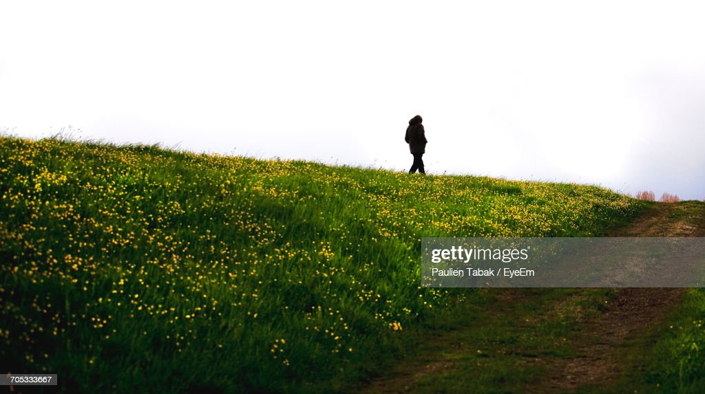 Scenic View Of Field Against Sky : Stockfoto