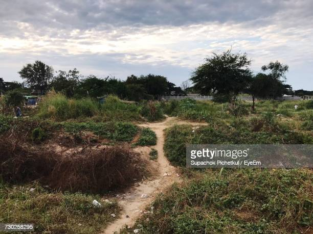 scenic view of field against sky - mae sot stock photos and pictures